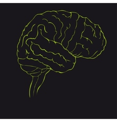 Brain in green side view vector image