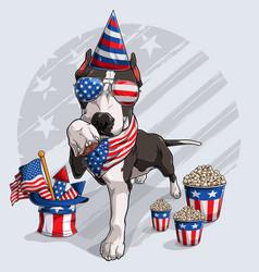 cute black pitbull dog 4th july elements vector image