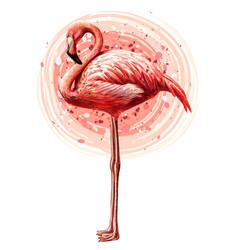 pink flamingo hand-drawn artisticflowered bird vector image