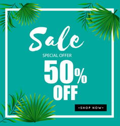 sale special offer 50 off green background vector image
