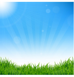 Blue sky and grass background vector