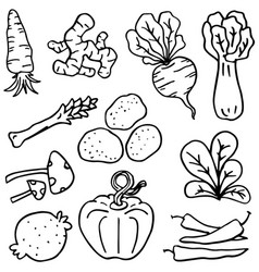 Doodle vegetable various set vector