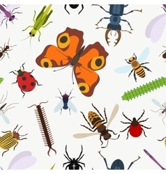 Garden insects seamless pattern lady beetle and vector