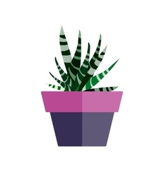 Green house plant in pot Leaf cactus flat vector image