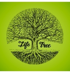 Hand drawn sketch tree with roots Ecology vector