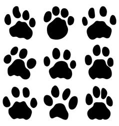 Jaguar paw vector