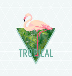 Tropical flamingo bird background vector