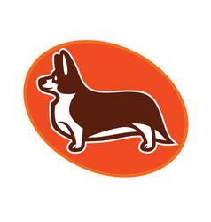 Welsh corgi standing in profile vector