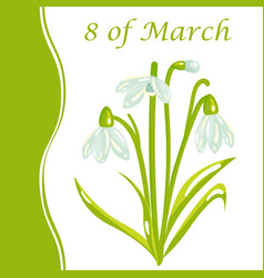 8 of march womens day holiday card with snowdrop vector image
