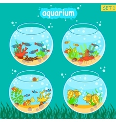 Aquarium set with fish and decoration Fishbowl vector
