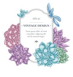Badge design with pastel succulent echeveria vector