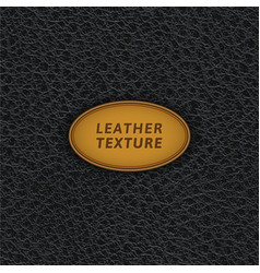 black leather seamless pattern vector image