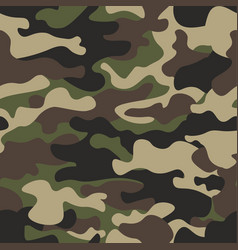 camouflage seamless pattern background classic vector image