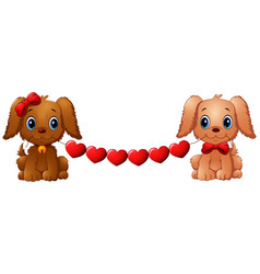 Couple valentine dogs with red heart vector