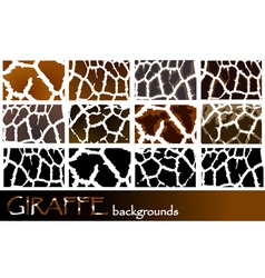 Giraffe pattern backgrounds vector