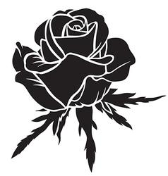 Rose bloom vector
