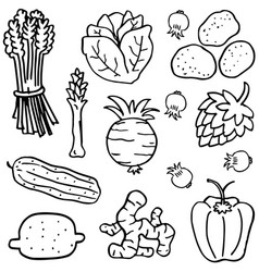 Various vegetable of doodles hand draw vector