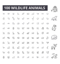 wildlife animals editable line icons 100 vector image