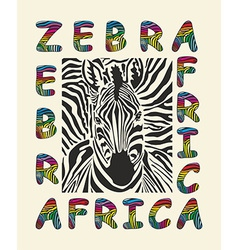 Zebra Africa background vector