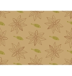 Anise with cardamom seamless pattern vector image