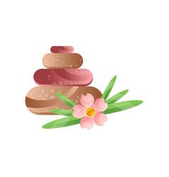 basalt massage stones and flower spa design vector image