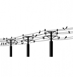 Birds on powerlines vector
