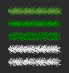 Christmas pine tree branches vector