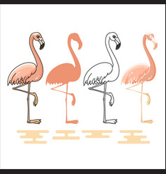 Flamingo silhouettes set vector