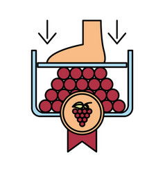 Grapes fresh fruits with crushing foot vector