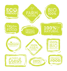 Green eco food labels health headings collection vector