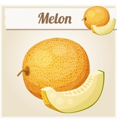 Melon Cartoon icon vector
