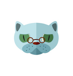 russian blue cat head with glasses icon vector image