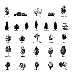 Set of hand drawn sketch trees vector image