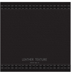 lather texture vector image vector image