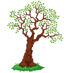 Tree with green leafage vector image vector image