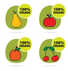 sticker of fruit organic vector image