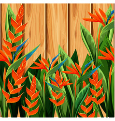 Bird of paradise and wooden wall vector
