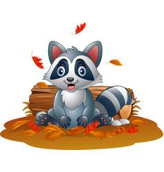 Cartoon raccoon in the autumn weather vector