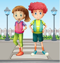 Kids at the pedestrian lane vector
