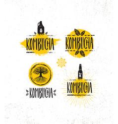 Kombucha tea brewery natural healthy soft drink vector