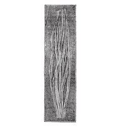 Nervous fibers vintage vector