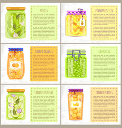 Organic fruit and vegetables conservation set vector