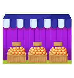 Fruitstands with empty signages vector image vector image