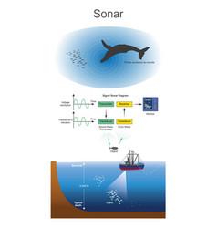 Sonar sound navigation and ranging vector