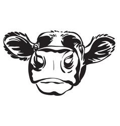 Abstract contour portrait calf image vector
