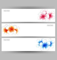 Hawaii flower frangipani colorful plumeria vector