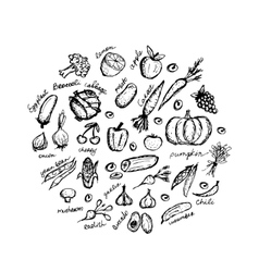 Vegetable sketch frame for your design vector image