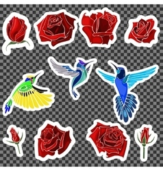 Birds and roses vector image