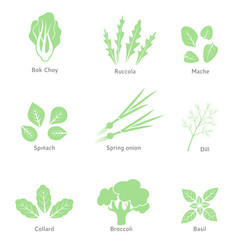 Eco organic bio logos or signs salad bar vector