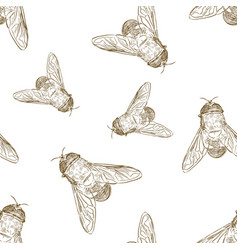 seamless pattern with hand drawn honey bees vector image